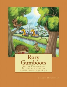 rory gumboots cover